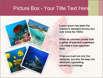 0000084677 PowerPoint Template - Slide 23