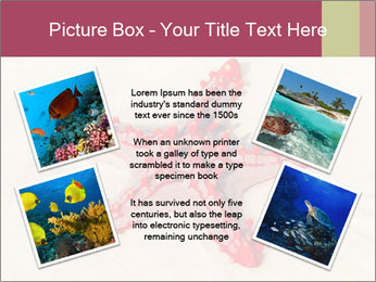 0000084677 PowerPoint Template - Slide 24
