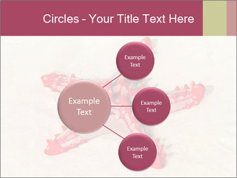 0000084677 PowerPoint Template - Slide 79