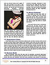 0000084680 Word Templates - Page 4