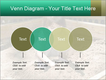 0000084681 PowerPoint Templates - Slide 32