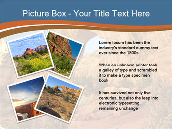 0000084691 PowerPoint Template - Slide 23