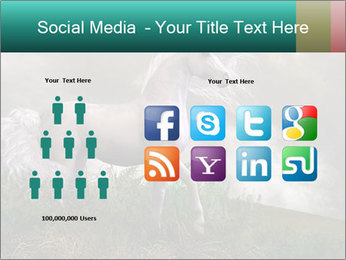 0000084693 PowerPoint Template - Slide 5