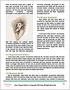 0000084693 Word Templates - Page 4