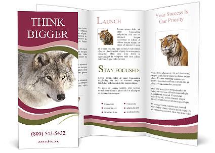 0000084696 Brochure Template