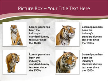 0000084696 PowerPoint Template - Slide 14