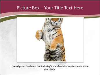 0000084696 PowerPoint Template - Slide 15