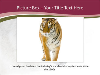 0000084696 PowerPoint Template - Slide 16