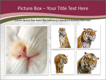 0000084696 PowerPoint Template - Slide 19