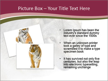 0000084696 PowerPoint Template - Slide 20