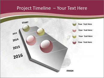 0000084696 PowerPoint Template - Slide 26