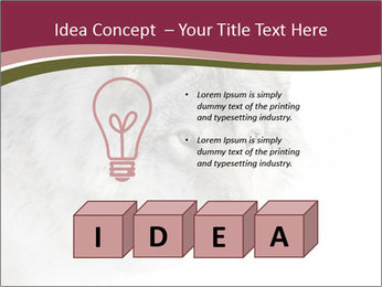 0000084696 PowerPoint Template - Slide 80