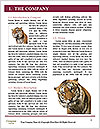 0000084696 Word Templates - Page 3
