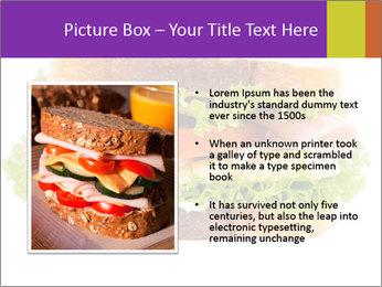 0000084698 PowerPoint Template - Slide 13