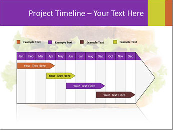 0000084698 PowerPoint Template - Slide 25