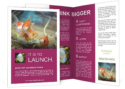 0000084701 Brochure Templates