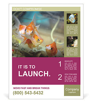 0000084701 Poster Templates