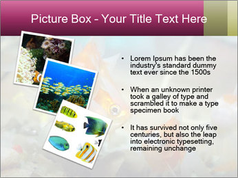 0000084701 PowerPoint Templates - Slide 17