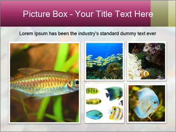 0000084701 PowerPoint Templates - Slide 19