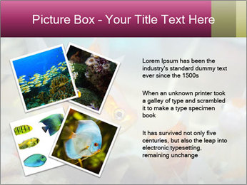 0000084701 PowerPoint Template - Slide 23