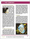 0000084701 Word Templates - Page 3