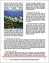 0000084701 Word Templates - Page 4