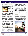 0000084703 Word Template - Page 3