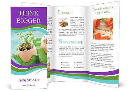 0000084704 Brochure Templates