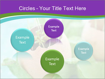 0000084704 PowerPoint Templates - Slide 77