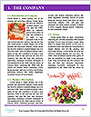 0000084704 Word Templates - Page 3