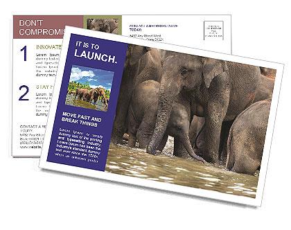 0000084707 Postcard Template