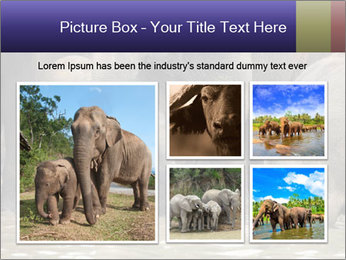 0000084707 PowerPoint Template - Slide 19