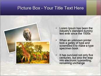 0000084707 PowerPoint Template - Slide 20