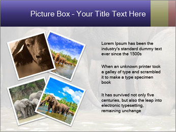 0000084707 PowerPoint Template - Slide 23