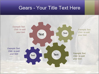 0000084707 PowerPoint Template - Slide 47