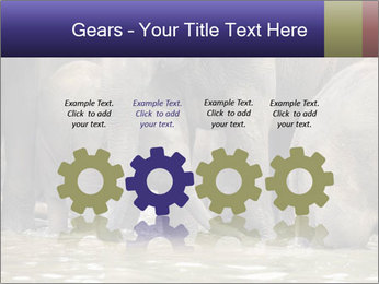 0000084707 PowerPoint Template - Slide 48