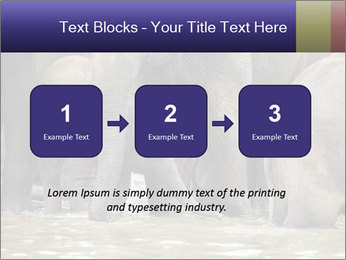 0000084707 PowerPoint Template - Slide 71
