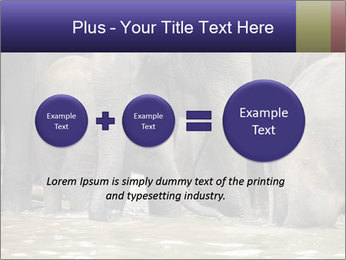 0000084707 PowerPoint Template - Slide 75