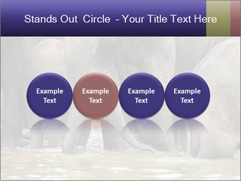0000084707 PowerPoint Template - Slide 76