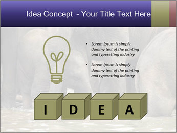 0000084707 PowerPoint Template - Slide 80