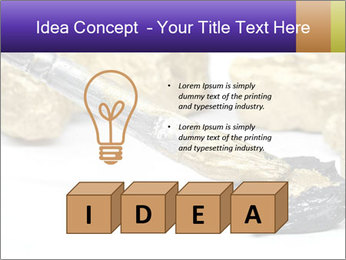 0000084710 PowerPoint Templates - Slide 80
