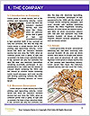 0000084710 Word Template - Page 3