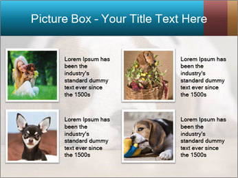 0000084711 PowerPoint Template - Slide 14