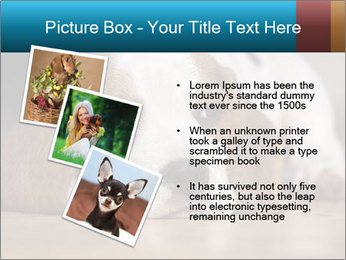 0000084711 PowerPoint Template - Slide 17