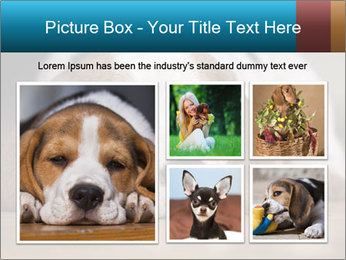 0000084711 PowerPoint Template - Slide 19