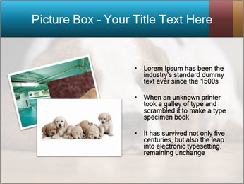 0000084711 PowerPoint Template - Slide 20