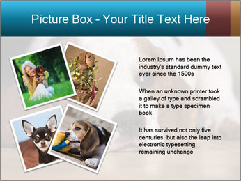 0000084711 PowerPoint Template - Slide 23
