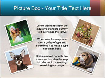 0000084711 PowerPoint Template - Slide 24