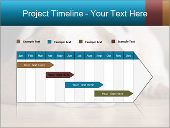 0000084711 PowerPoint Template - Slide 25