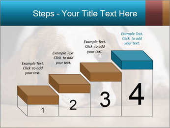 0000084711 PowerPoint Template - Slide 64